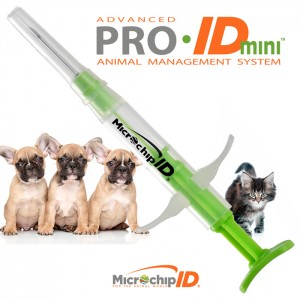 Pro-ID MINI Chip 50-Count