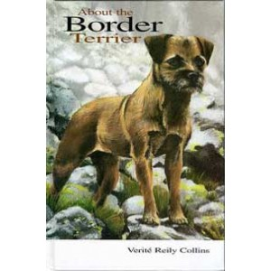 About the Border Terrier
