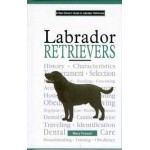 A New Owner's Guide Labrador Retrievers