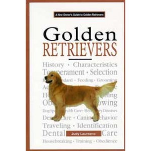 A New Owner's Guide to Golden Retrievers
