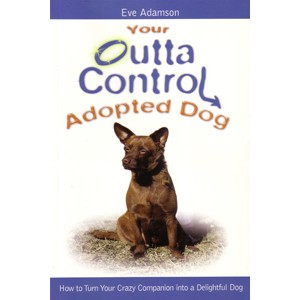 Your Outta Control Adopted Dog
