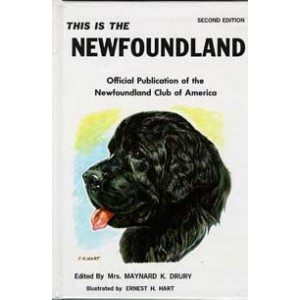 This is the Newfoundland