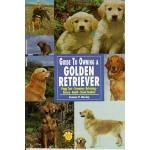 Guide To Owning A Golden Retriever