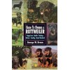 Guide To Owning A Rottweiler