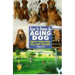 Guide To Owning An Aging Dog
