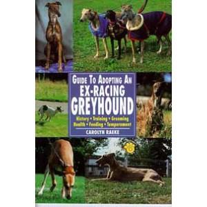 Guide to Adopting An Ex-Racing Greyhound