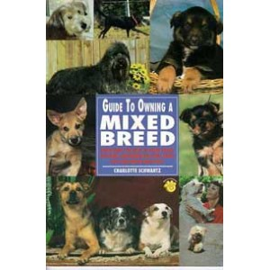Guide To Owning A Mix Breed
