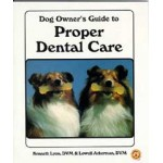 Dog Owner's Guide To Proper Dental Care