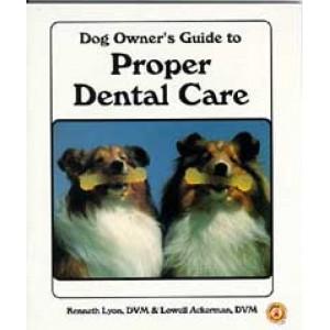 Dog Owner's Guide To Proper Dental Care