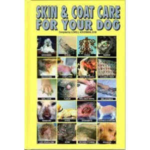 Skin and Coat Care For Dogs