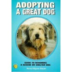 Adopting a Great Dog