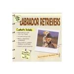 The Simple Guide Labrador Retrievers