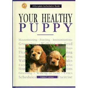 Your Healthy Puppy