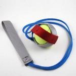 Ball Jock Toy by AmeriPet
