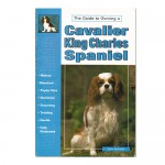 Guide to Owning a Cavalier King Charles